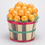 *2 Peck Citrus Grove Basket Free Shipping